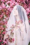 一个美丽的新娘,在面纱下的女孩在桃红色佐仓 免版税库存照片