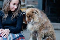 一个美丽的欧洲女孩坐与一条蓬松牧羊人` s狗的门廊 免版税库存照片