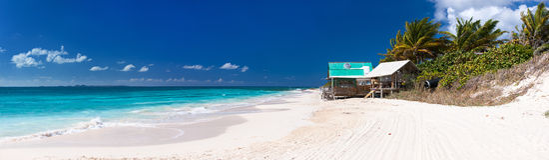 在鳗鲡属的美丽的加勒比海滩 库存图片