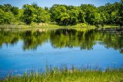 一个美丽的湖公园在Hagerman野生生物保护区,得克萨斯 库存图片