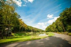 一个美丽的湖在公园 免版税图库摄影