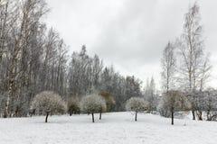 一个美丽的积雪的冬天森林Ice湖和森林小河 免版税库存照片