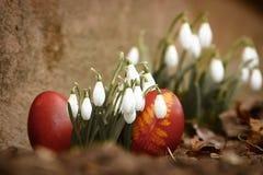 一个美丽,色的红色复活节彩蛋在后院 传统春天食物和节日 库存图片