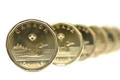 一个美元硬币模式 免版税库存图片