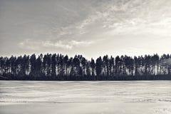 一个美好的冬天风景的剪影 免版税库存照片