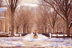 从一个美好的地方的美好的冬天视图 免版税图库摄影