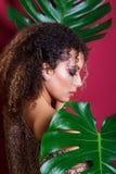 一个美好的年轻非裔美国人的女性时装模特儿的特写镜头画象与卷发的 库存照片