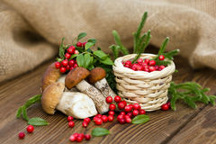 一个美好的构成、新鲜的森林莓果在篮子和可食的蘑菇 免版税库存照片