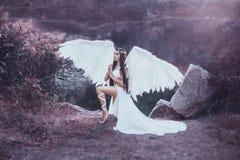 一个美好的白色天使 库存图片