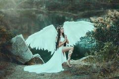 一个美好的白色天使 库存照片