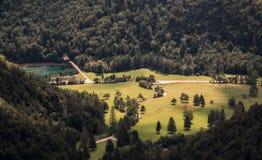 一个美好的绿色领域围拢与厚实的森林 库存图片