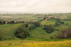 一个美好的绿色领域在意大利 免版税库存照片