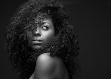 一个美好的非裔美国人的时装模特儿的画象 图库摄影