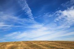 一个美好的领域,流动入与卷云的天空 免版税库存图片
