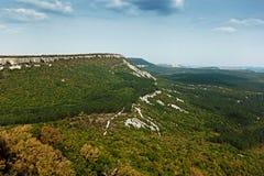 一个美好的风景和多云天空 杉木和落叶前面 免版税库存图片