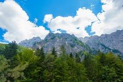 一个美好的风景在山、云彩在峰顶上和森林前景的 免版税库存图片
