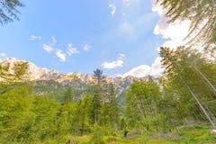 一个美好的风景在山、云彩在峰顶上和森林前景的 库存照片