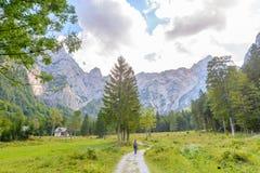 一个美好的风景在山、云彩在峰顶上和森林前景的 库存图片
