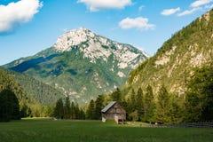 一个美好的风景在山、云彩在峰顶上和森林前景的 图库摄影