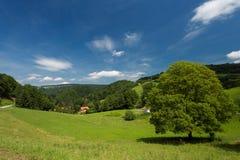 一个美好的风景在德国。 库存照片