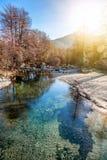 一个美好的风景,一条山河在春天森林, Th 库存图片
