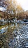 一个美好的风景,一条山河在春天森林, Th 库存照片