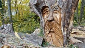 一个老人的神仙的面孔被雕刻在木头外面 库存照片