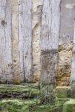 一个老半木料半灰泥的房子的细节有肮脏的墙壁和被风化的木头的,损坏的,底盘, abstact照片法国 免版税库存图片
