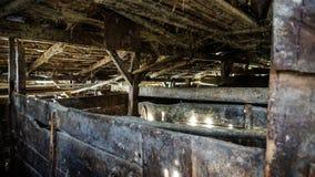 一个老大农场的猪圈 免版税库存图片
