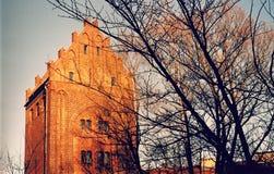 一个老大厦在SÅ 'upsk,波兰的心脏 库存图片