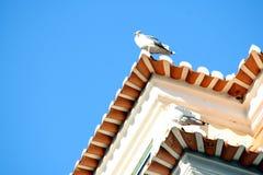 一个老大厦的详细资料在里斯本 免版税库存照片