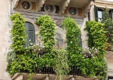 一个老大厦的门面在广场della Erbe的在维罗纳 免版税库存图片