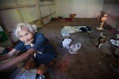 一个老妇人活单独与她的猫在Klong Toey贫民窟在曼谷 免版税库存照片
