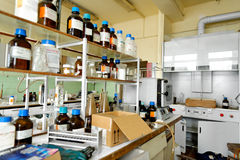 一个老实验室的照片有很多瓶的 免版税库存图片
