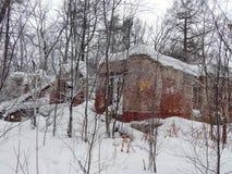 一个老房子的废墟在冬天 库存图片