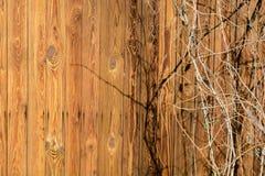 一个老木房子的墙壁由稀薄的垂直的板条制成 被风化的和年迈的委员会 免版税库存图片