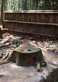 一个老木树干切了背景 免版税图库摄影