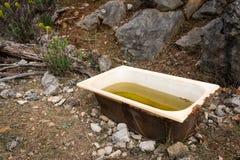 一个老浴缸,绵羊的饮水池在克罗地亚 免版税图库摄影