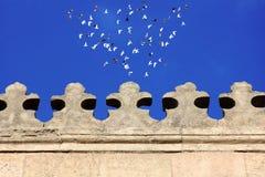 一个老清真寺的伊斯兰教的艺术有鸟飞行的 免版税图库摄影
