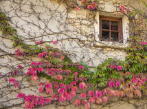 一个老白色房子的窗口中世纪村庄的Perouges有c的 免版税库存照片