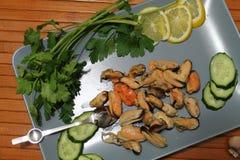 一个老盘用淡菜,切黄瓜 免版税库存照片