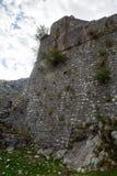 一个老石堡垒的墙壁 图库摄影