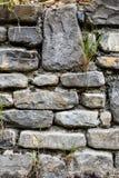 从一个老石墙的细节有生长在镇压的草的 免版税库存图片
