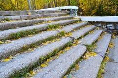 一个老石楼梯在城市公园 免版税库存照片