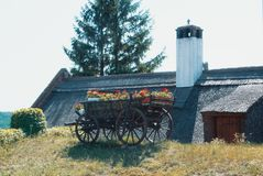 一个老葡萄酒木推车用明亮的红色花standi填装了 免版税库存照片