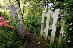 一个老葡萄酒门在庭院里 库存照片