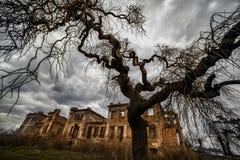 一个老被放弃的豪宅的废墟 库存照片