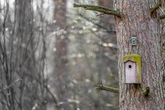 一个老被风化的鸟舍的抽象图象在一高松树的树干的反对被弄脏的背景的与bokeh和  免版税图库摄影