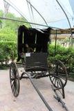一个老门诺派中的严紧派的推车 库存图片