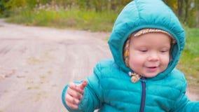 一个耳朵老男孩在秋天公园跑并且微笑 常平架 股票视频